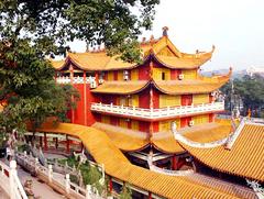 九龙坡旅游