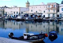突尼斯旅游