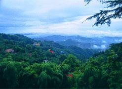 莫干山旅游