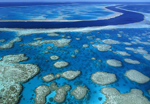 大堡礁旅游