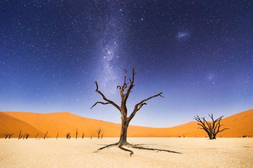 纳米比亚旅游