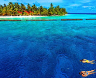 毛里求斯旅游